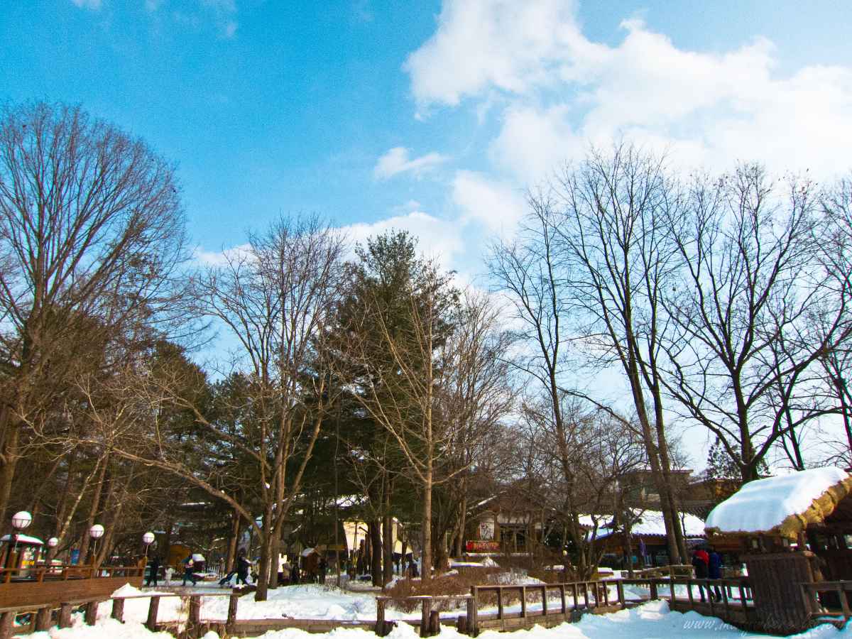 ☀ In Anywhere Else: nami island, the solo part