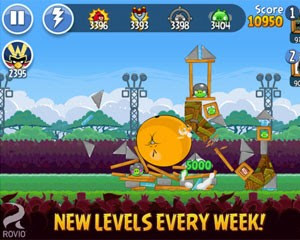 Rovio lana novo game 'Angry Birds Friends'