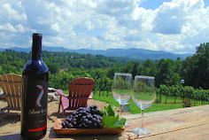Top 15 Wineries near Asheville