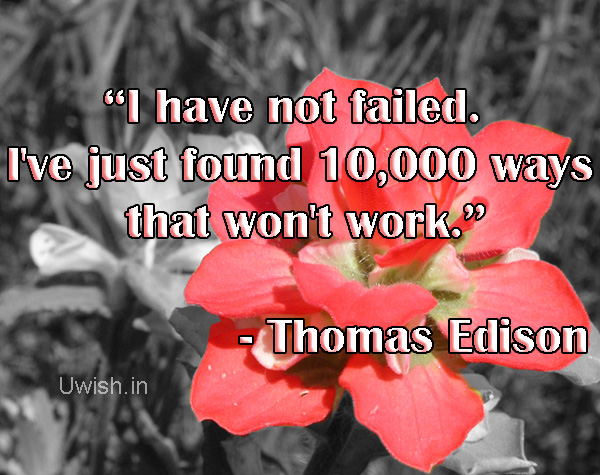 I have not failed. I have just found 10000 ways that won't work.  - Thomas Edison
