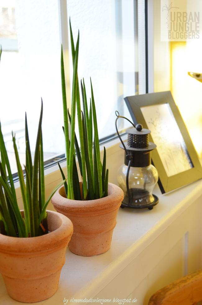 deko fensterbank schlafzimmer m belideen. Black Bedroom Furniture Sets. Home Design Ideas