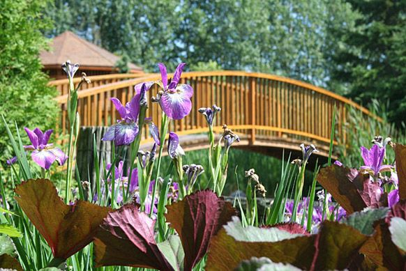 Le blogue des bleuets du lac saint jean jardin scullion for Jardin scullion