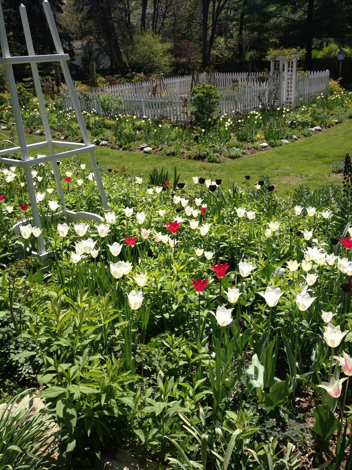 my visit to a garden My garden essay in english for school students  write an english essay on my garden in your  ← my favourite television programme essay for kids a visit to.