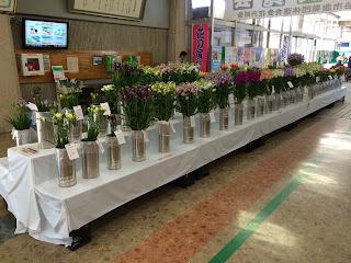 第78回花の展覧会