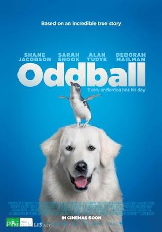 Chú Chó Oddball - Oddball
