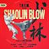 T.H.E.M. - Shaolin Blow