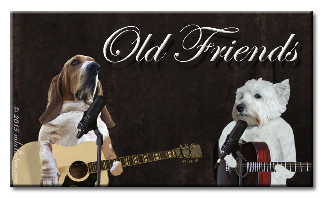 Bentley Basset and Pierre Westie playing guitars