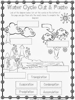 homeschool adventures in engineering week 5 mechanical engineering the toad has been caught. Black Bedroom Furniture Sets. Home Design Ideas