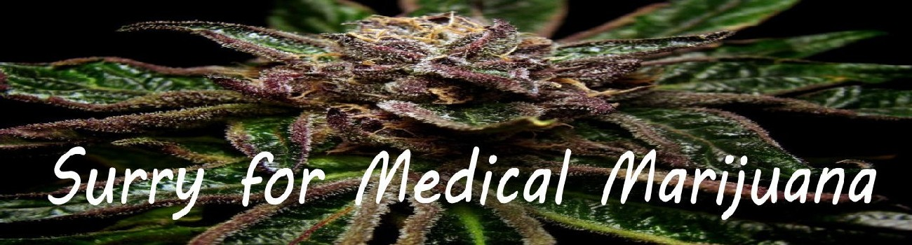 Medical Marijuana for Surry