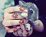 {good bunny}