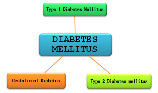 Type1 Diabetes Mellitus (1DDM)