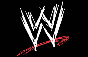 Who got fired from WWE in 2013 who left WWE future endeavors this year