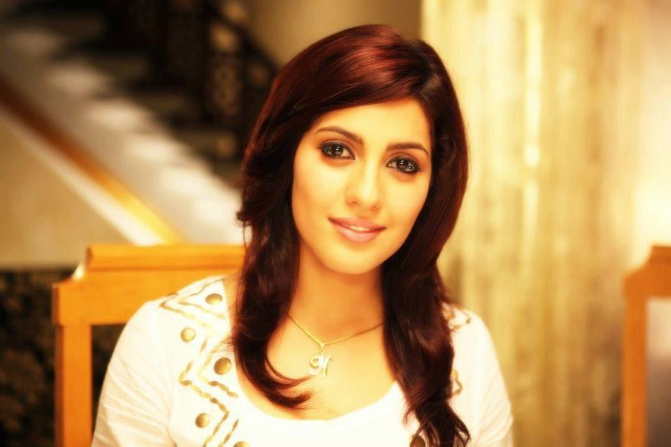 Neetu singh Punjabi Actress 2014