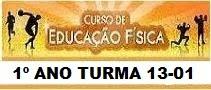 DIÁRIO ED. FÍSICA 13-01
