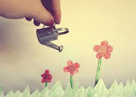 Quem planta fé, colhe milagres.