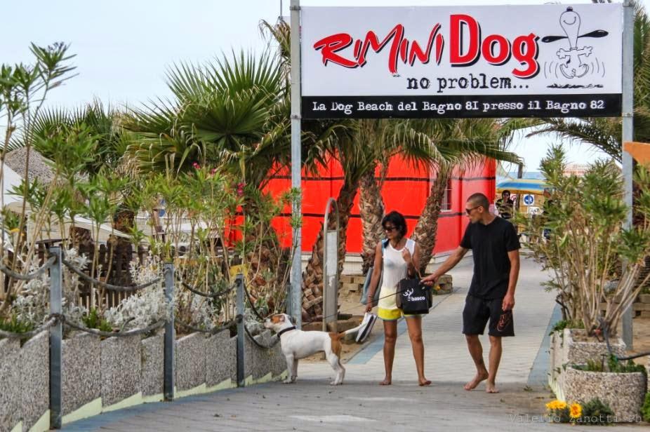 Associazione italiana difesa animali ed ambiente bagno 81 rimini cani in spiaggia come piace a - Bagno 81 rimini ...