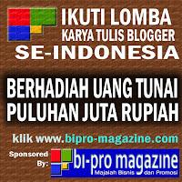 Bi-Pro Magazine Menuju Situs Bisnis dan Promosi Nomor 1