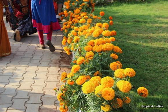 mysore dasara 2015 flower show20
