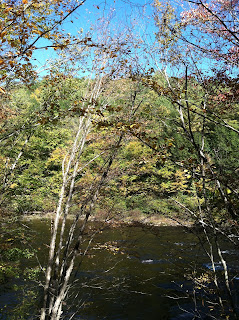lehigh valley gorge trail fall foliage lehigh river