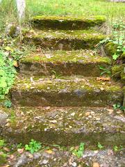 Portaat puutarhaan