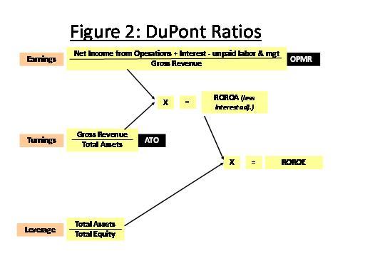 dupont analysis essay