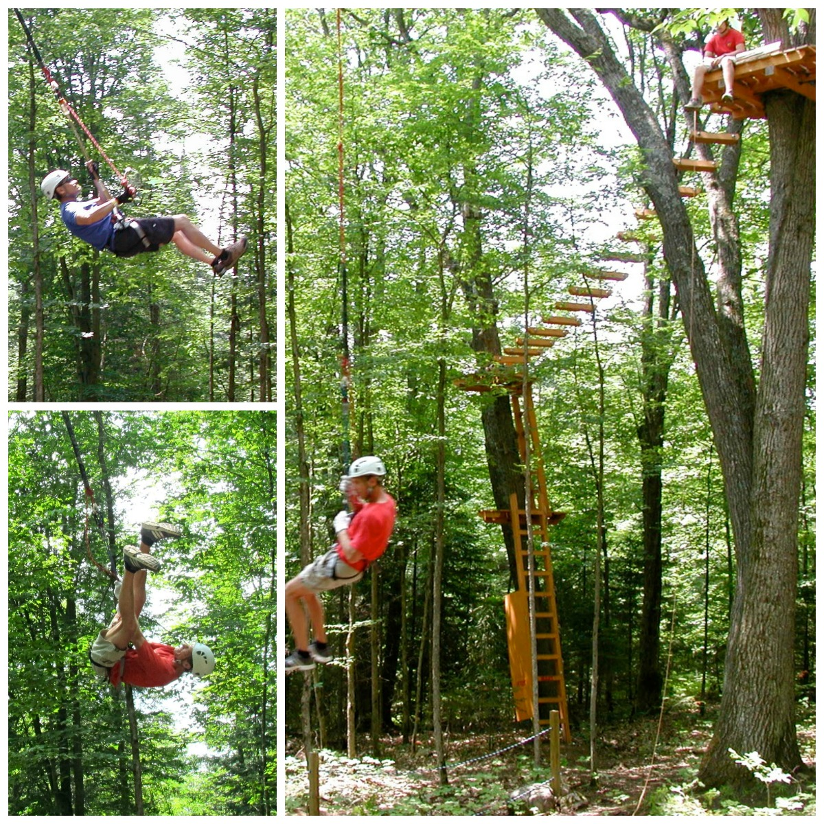 Half Off Treetop Cannopy Tour