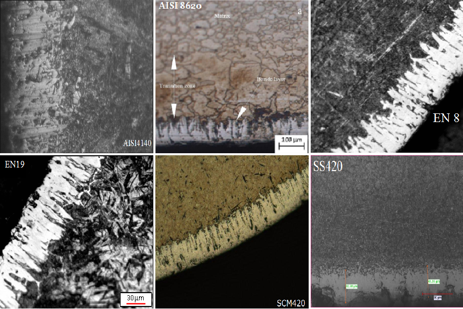 Microstructure of some of the boronized material.