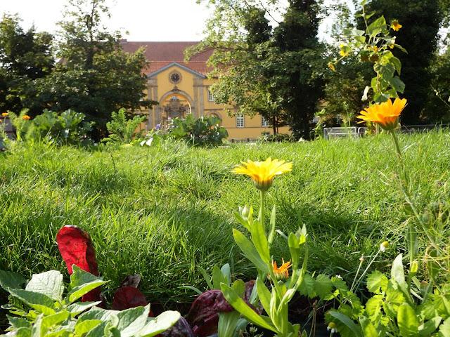 osnabrück,osnabrueck,marktplatz,popupgarten,urbangardening,wirsindimgarten
