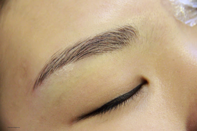 Dawn chan singapore lifestyle blogger eagle beauty for 1 salon eyebrow embroidery
