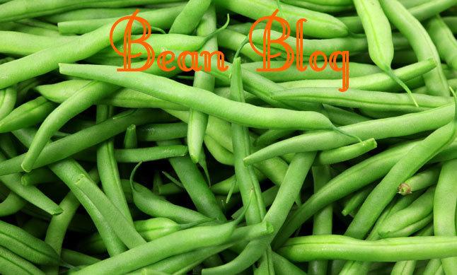 Bean Blog
