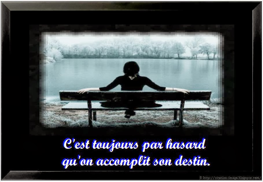 Citation destin hasard en image