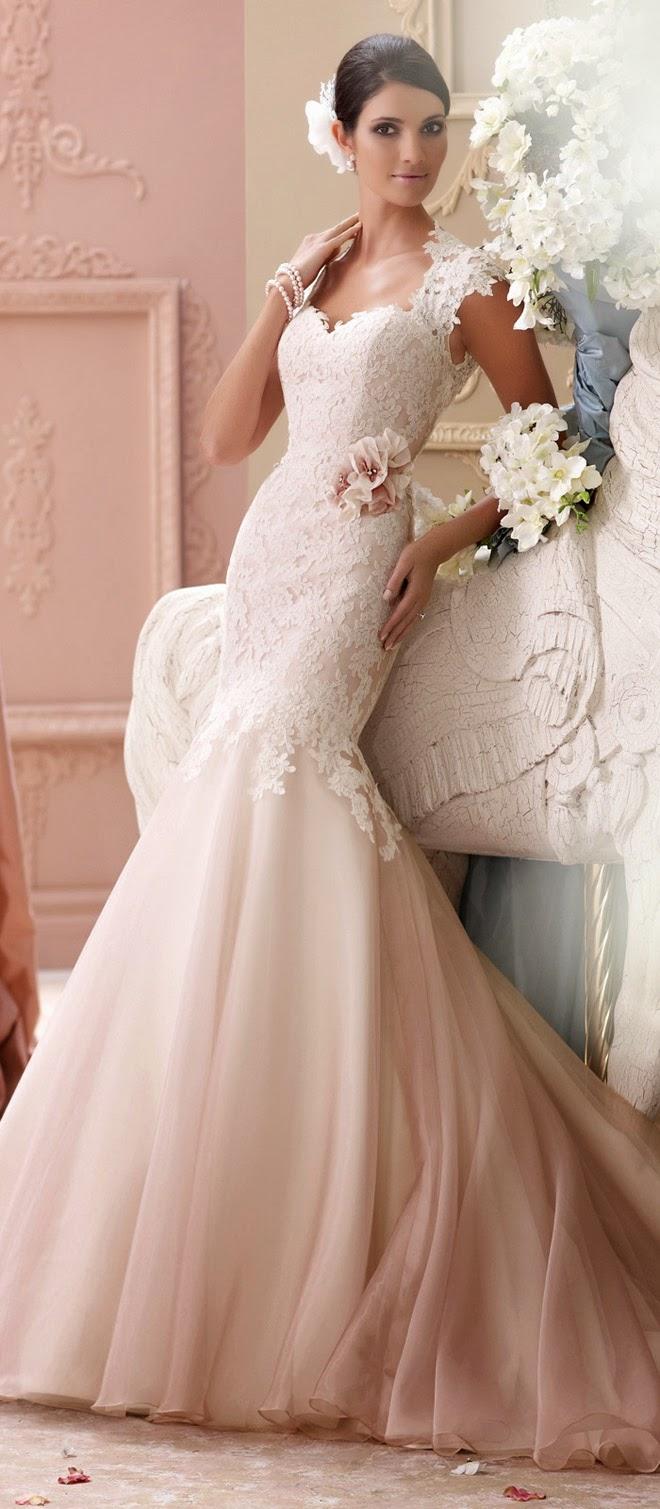 David tutera for mon cheri spring 2015 bridal collection for Mon cheri wedding dresses