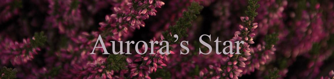Aurora's Star