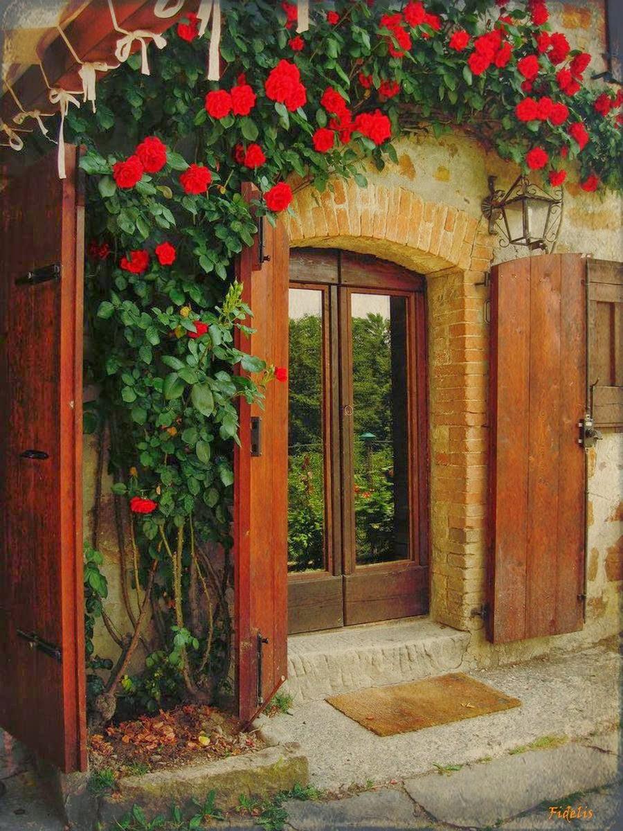 Цветы у входных дверей