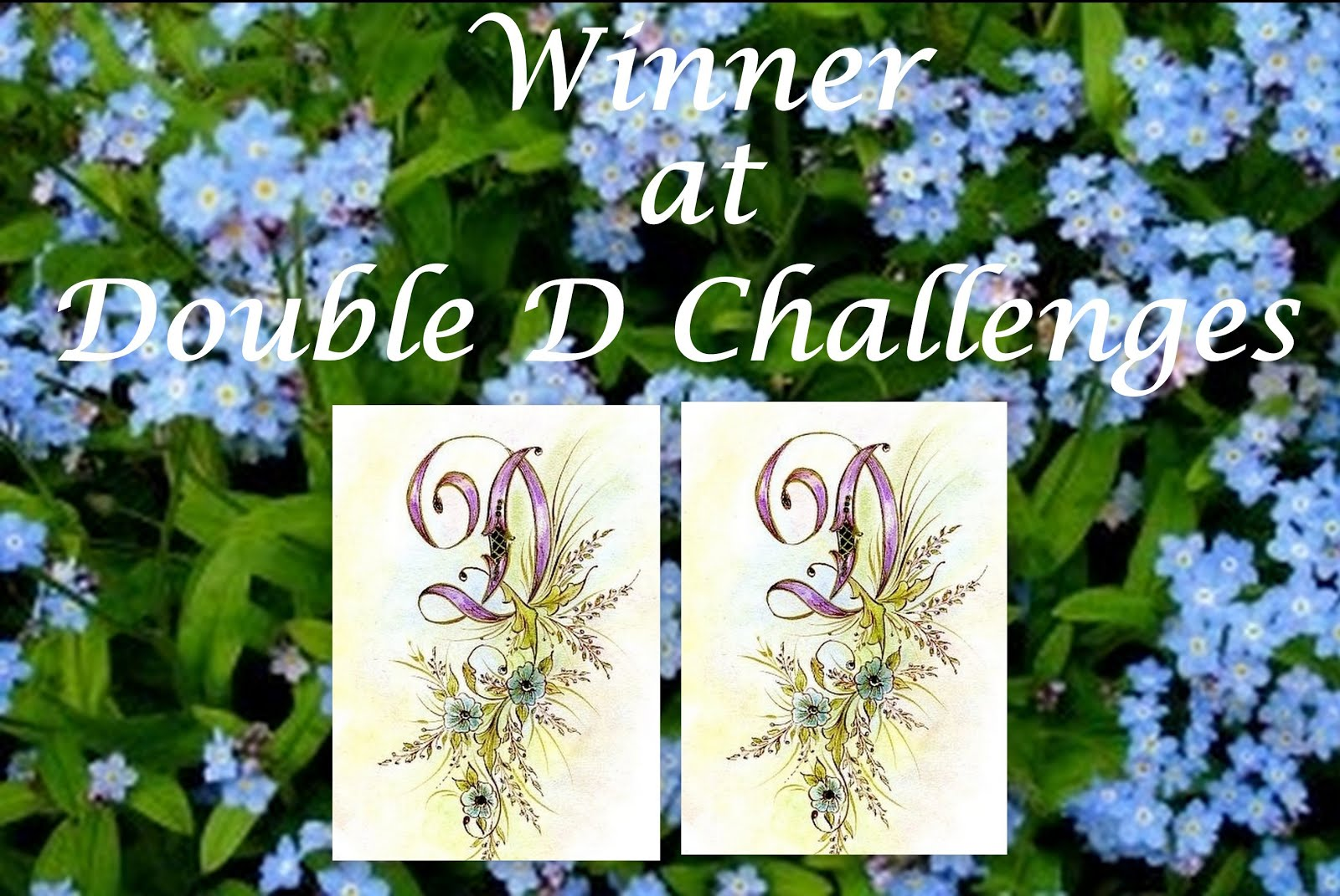 Double D Challenges - Nautical Winner