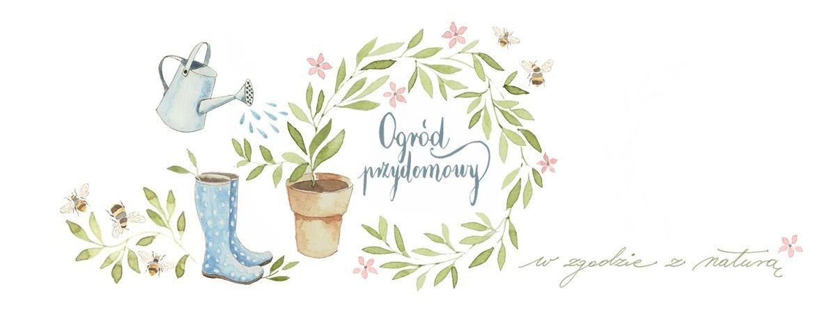 Ogród przydomowy - blog ogrodniczy, uprawa warzywnika