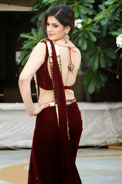 Hot Zarine Khan Saree