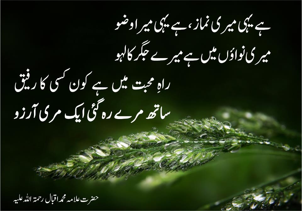 Malik TV KTS: Allama Iqbal Poetry, Iqbal Shayari in Urdu 2013