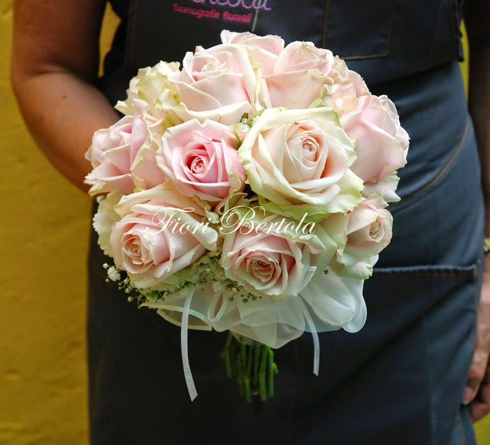 rose - Ecosia