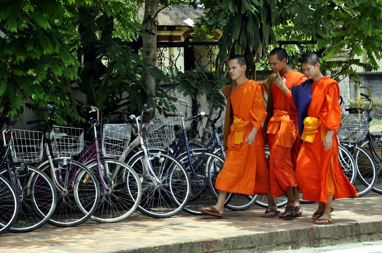 luang prabang monjes budistas