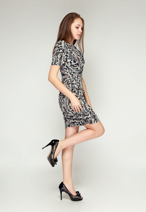 Shirred Leopard Dress