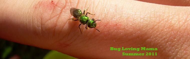 Bug loving mama