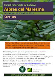 Cursets Naturalistes de Butxaca