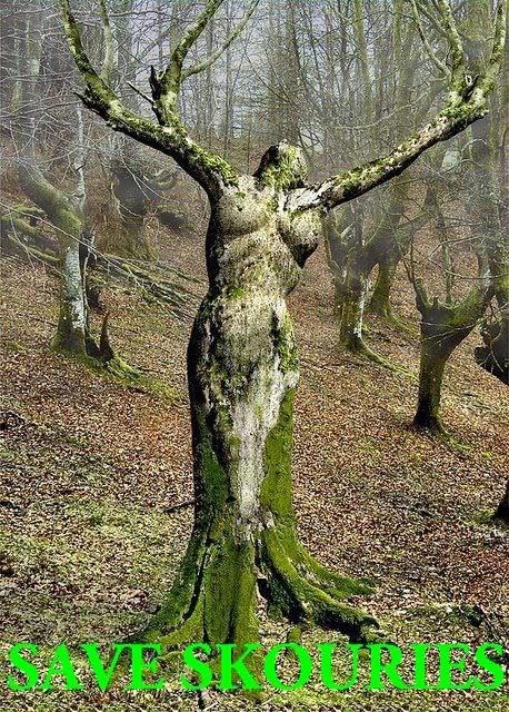 έργο Τέχνης της μητέρας φύσης που πάνε να τα καταστρέψουν! Θα τους αφήσουμε;