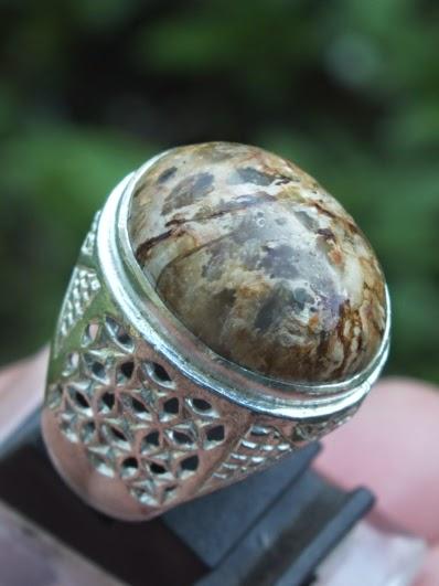 cincin batu fosil