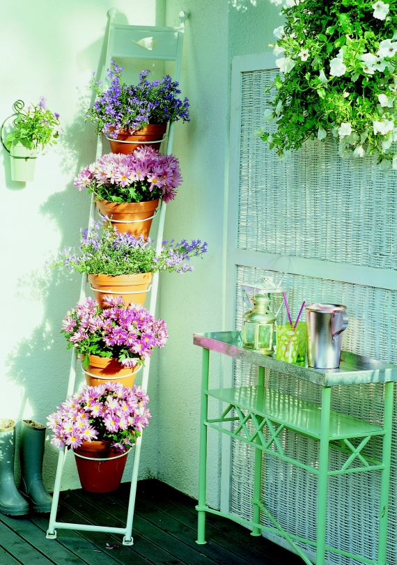 flores jardim exterior : flores jardim exterior:Oturma grubunuz varsa, ortaya bardak, kadeh, vazo, çiçek, obje
