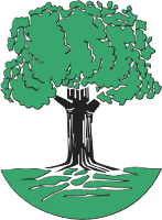 El árbol de la ciencia en el siglo XXI