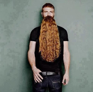 beard man illusion