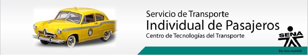 TRANSPORTE INDIVIDUAL DE PASAJEROS