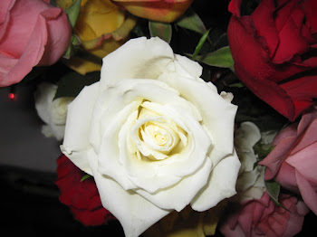 """Layers of love are as many as petals of a rose."" -Jane Marie"